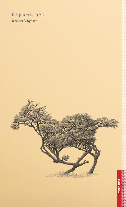התבוננות על החיים מגבו של סוס דוהר - Post Image